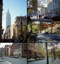 Newyork81a