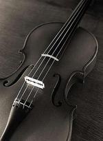Violinxx