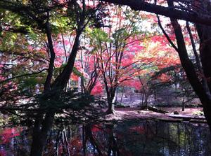 Autumnb