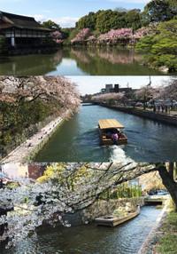 Kyoto154a