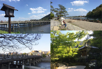 Kyoto16419