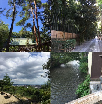 Kyoto16824_2