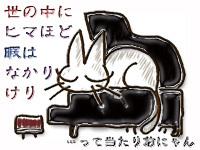 Cat417