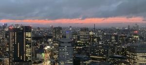 Tokyonightf